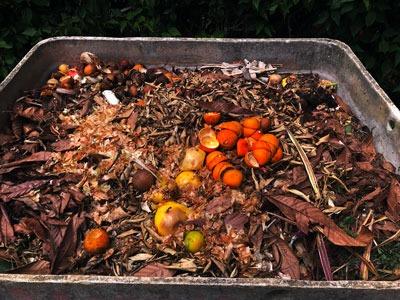 """Lixo urbano e resíduo do sítio """"in natura"""""""